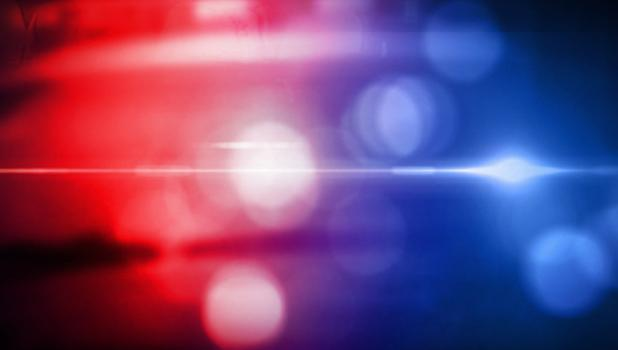 The Minneota Police Department and First Responders received the following calls for service: