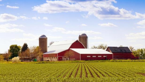 The Minnesota Department of Agriculture's (MDA) Rural Finance Authority reminds beginning farmers and asset owners to apply by October 1, 2019 for the tax credit for the sale or lease of land, equipment, machinery, and livestock.