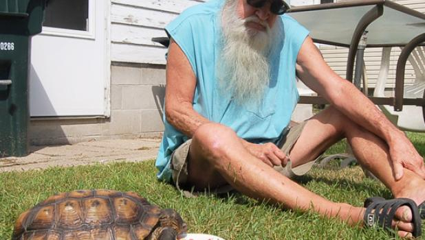 Janssen insists that he would not be around today if not for Dash (Budders as he calls him). It's a real rescue-rescue story, he insists. He watched his tortoise eat from a plate recently in Minneota.