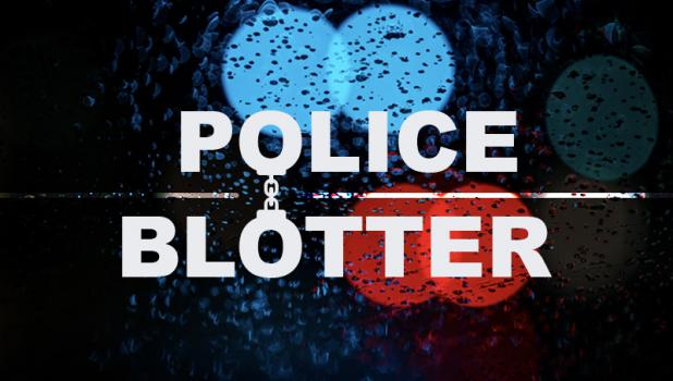 The Minneota Police Department and First Responders received he following calls for service: