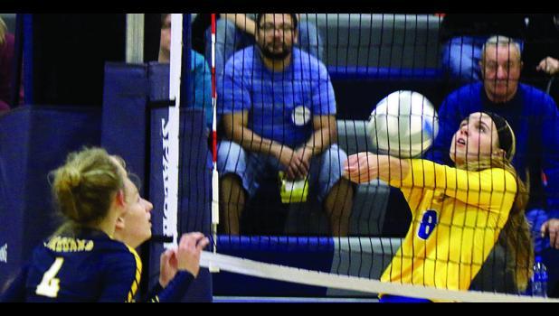 Natalee Rolbiecki bumps the ball