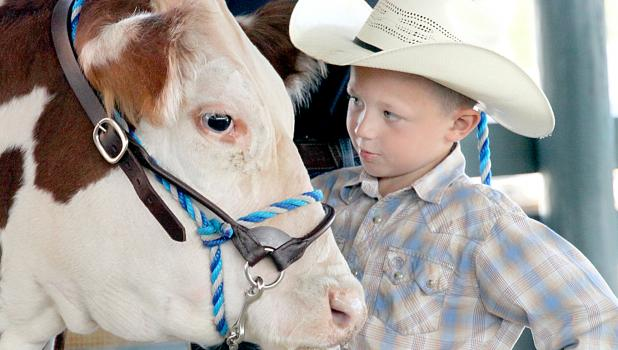 Sage Bordewyk enjoys a moment with his cow.