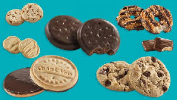 The newly-formed Girl Scout Troop 37814 of Minneota will be selling cookies at three locations from 9 a.m. to noon on Saturday, Feb. 15.