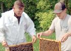 J.D. Pesch, left, and his son Charlie each held up a frame to show the many bees working to care for the queen while also making honey. Nearly 99 percent of the workers bees are female and are the offspring of the queen.