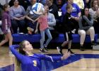 Ellie Pesch has been a reliable server for Minneota and she served well Tuesday night against Lakeview.
