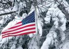 An American flag blew in the wind after Friday night, Saturday morning's snow turned Minneota back into a winter wonderland.