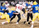 Beau Banish (55) brings tackles BOLD running back Tim Peppel in the second quarter Friday night in Minneota.