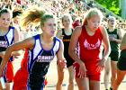 Lizzy Gillingham took the baton from Grace Drietz during the 4x400-meter relays run at the state meet.