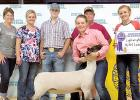 Heidi Guttormsson with her Reserve Champion Lightweight Market Lamb and her family.