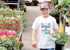 Derek Gregoire, 5, of Cottonwood helps carry some potted plants that his mother purchased at the Cenex Flower Shop on Saturday.