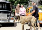 """Mike Grengs walked his dog """"Tiger"""" and talked to other visitors."""