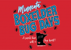 There are five girls vying for the 2018 Boxelder Bug Days Queen Crown this year.